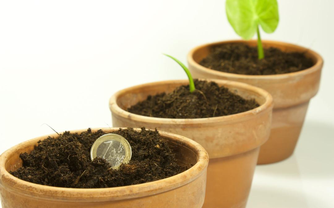 Semine e Raccolti
